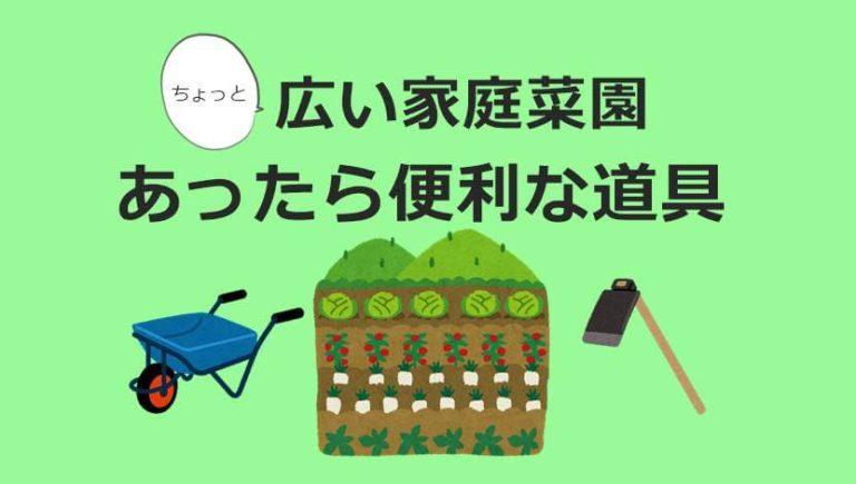 家庭菜園で私が使ってる道具☆小さい畑で使える便利アイテムご紹介