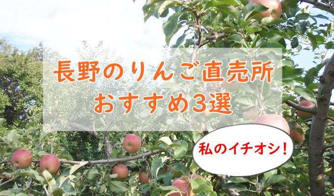 長野の美味しいリンゴが買える直売所【私のおすすめイチオシ3選!】北信州