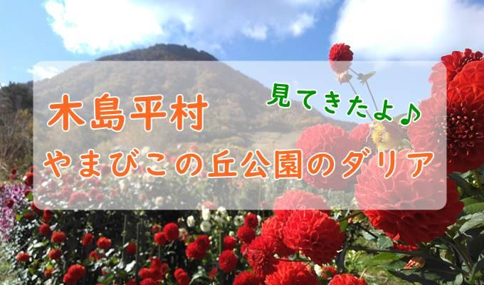 木島平村やまびこの丘公園のダリアを見に行ってみた!見頃は10月中旬ころまで?