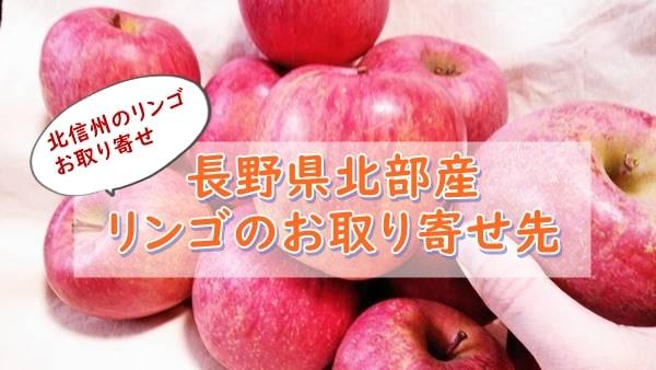 長野産おいしいリンゴがお取り寄せできるところ!おすすめは北信州産