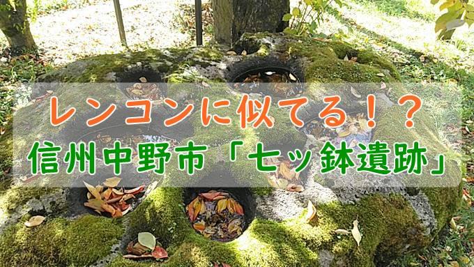 中野市の遺跡「七ッ鉢」ってどんなところ?レンコンに似てる遺跡!?